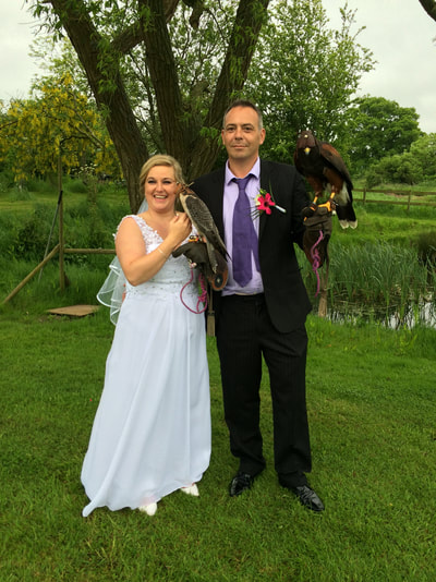 wedding falconry